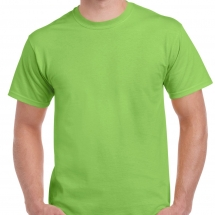 2000-Adult-T-Shirt-Lime